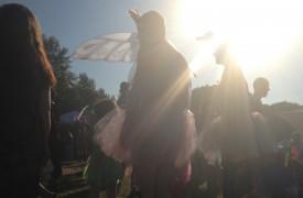Fairies under sunlight © Maxamaris Hoppe
