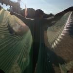 Tristan in wings © Maxamaris Hoppe