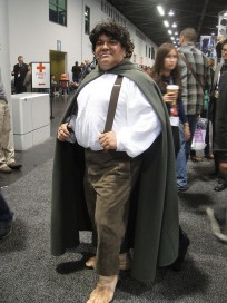 Last Minute Fairy Gnome And Hobbit Costumes For The