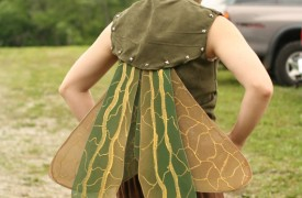 Fairy Grasshopper Wings via Aura Paige of  Two Moms Ltd